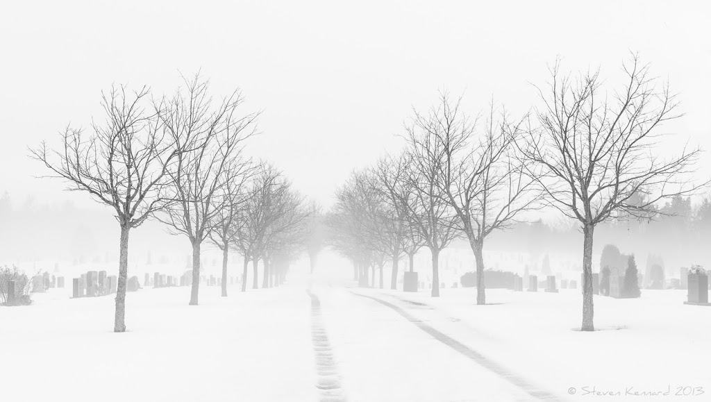 Snow tracks through the fog - Steven Kennard 2013