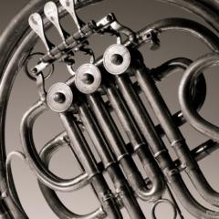 French Horn #1 - Steven Kennard 2008