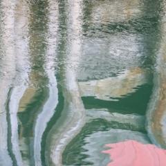 Water Reflection #5924 - Steven Kennard 2010