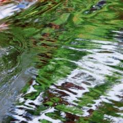Reflections ,Keji #11 - Steven Kennard 2010