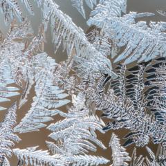 Icescapes 5 - Steven Kennard 2013