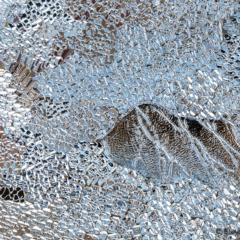 Icescapes 1 - Steven Kennard 2013